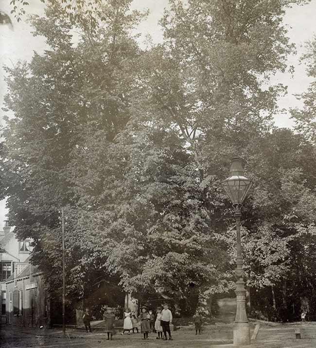Foto Entree Walkartpark ca. 1900